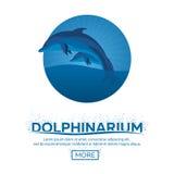 Dolphinarium. Dolphin show. Banner. Ticket. Vector flat illustration. Stock Photo