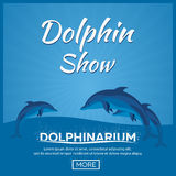 Dolphinarium. Dolphin show. Banner. Ticket. Vector flat illustration. Dolphinarium. Dolphin show. Banner Ticket Vector flat illustration Royalty Free Stock Photography