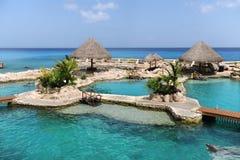 Dolphinarium em Cozumel México Foto de Stock