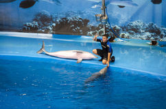 Dolphinarium show Stock Photo