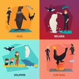Dolphinarium Show Concept Icons Set. With seal and dolphin symbols flat isolated vector illustration Stock Image