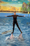 The Dolphinarium Stock Photo