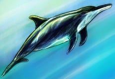 Dolphing podwodny nakreślenie Obraz Royalty Free