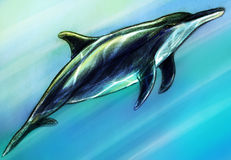 Dolphing underwater sketch. Hand drawn and colored pencil sketch of a black dolphin under water in the sea, sun rays blinking on its skin Royalty Free Stock Image