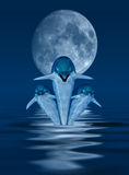 Dolphins. This image shows 3 generated dolphins with moon vector illustration