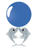 Dolphins. Two dolphins play dark blue by a ball Royalty Free Stock Image