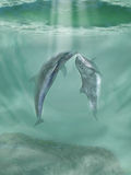 Dolphins. Dancing in the ocean Stock Image