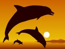 Free Dolphins. Royalty Free Stock Images - 46345019