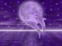 Dolphins. In the night jumping on the moon Royalty Free Stock Photography