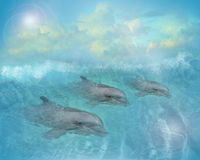 Dolphins art illustration. Image and illustration mystical composition of 3 Dolphins swimming in aqua sea for wallpaper or background Stock Photos
