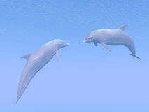 Dolphins date - 3D render Royalty Free Stock Images