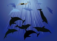 Dolphins and diver illustration Royalty Free Stock Images