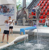 Dolphins in dolphinarium. Varna, Bulgaria stock photos