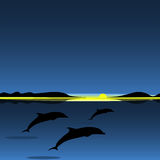 Dolphins family sea animal landscape. Art vector illustration Royalty Free Stock Photo