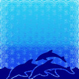 Dolphins illustration. Swimming dolphins under the water vector illustration