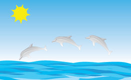 Dolphins Jumping Royalty Free Stock Photos