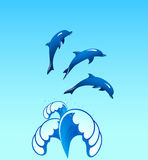 Dolphins. Jumping out of a fountain of waves Stock Photography