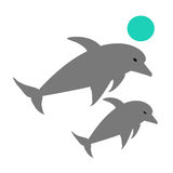 Dolphins with kid Stock Photos