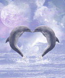 Dolphins Kisses. Two kissing dolphins forming a heart! The full moon shines. A sweet Dolphin scene Royalty Free Stock Photos