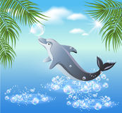 Dolphins leaps from water Royalty Free Stock Photography