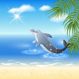 Dolphins leaps from water Stock Photos