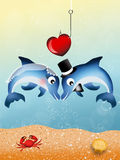 Dolphins in love Stock Images