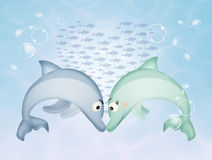 Dolphins in love in the ocean Stock Photos