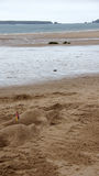 Dolphins in the sand at Tenby beach Stock Images