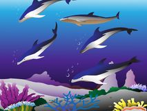 Dolphins in the sea Stock Photo