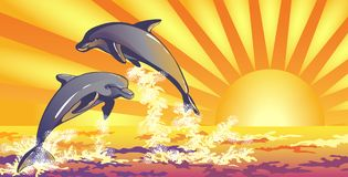 The dolphins in the sea vector illustration
