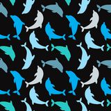Dolphins seamless background. Dolphin seamless pattern background vector illustration. Stock Images