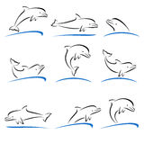 Dolphins set. Vector Royalty Free Stock Photo