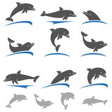 Dolphins set. Vector Stock Photos