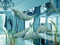 Dolphins in the shop. Group of the dolphins in modern shop interior (3D Stock Photo
