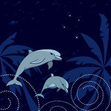 Dolphins and Southern Cross Stock Image