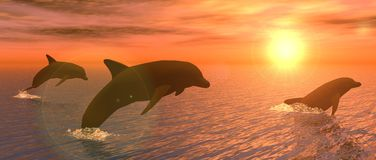 Dolphins at Sunset. Illustration showing some dolphins playing at sunset Royalty Free Stock Images