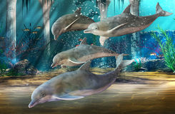 Dolphins Swimming royalty free illustration