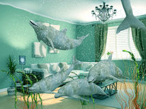 Dolphins swimming in living room Royalty Free Stock Image