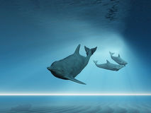 Dolphins swimming underwater Stock Photo