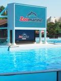 Dolphins tank Zoomarine acqua park Royalty Free Stock Photos