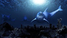 Dolphins underwater Royalty Free Stock Image