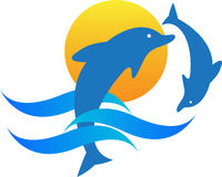 Dolphins. A vector drawing represents dolphins design Stock Photos