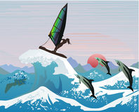 Dolphins and windsurfer in waves Royalty Free Stock Photo