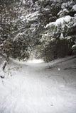 Dolt spår för snö Arkivbilder