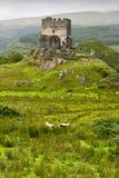 Dolwyddelan  castle in Snowdonia, Stock Image