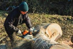Dolyna, Ukraine, am 25. Februar 2019 Eine Frau schnitzt ein Gras, das Meißel Baum von Stihl für das Ernten des Brennholzes im Win lizenzfreies stockfoto