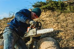 Dolyna, Ukraine, 25 February 2019. A man carves a grass chisel saw tree from Stihl for harvesting firewood in winter royalty free stock photography