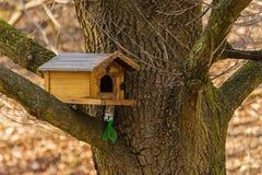 Dom dla ptaków Obrazy Royalty Free