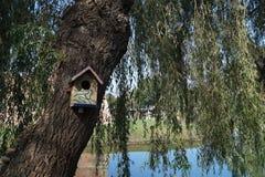 Dom dla ptaków Obraz Stock