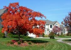 Dom i jesień krajobraz Zdjęcia Stock